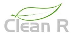 Logo clean r