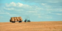 Agriculture 692515 640 webnewsdetailed jpg