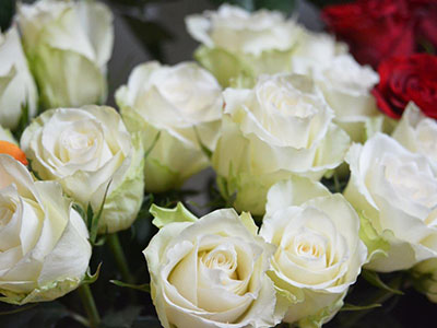 4 июля золотая свадьба Нину Миронову